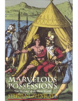 MARVELOUS POSSESSIONS the wonder of the