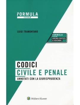 CODICI CIVILE E PENALE 2020