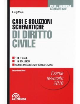 CASI E SOLUZIONI SCHEMATICHE DIRITTO CIV